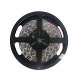 RGB Color Flexible LED Light Strip(60 SMD 5050 leds per meter nonwaterproof) 5m/roll