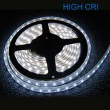 High CRI Super Brightness White Light 5M Waterproof IP68 300 LED Strip Light 2835 SMD String Ribbon Tape Roll 12VDC