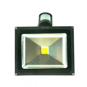 30W LED Human Body Induction Flood Light Outdoor Landscape Lamp