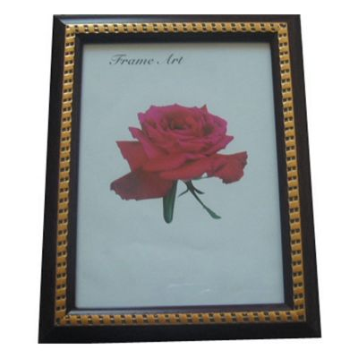 PS Photo Frame-100*150mm