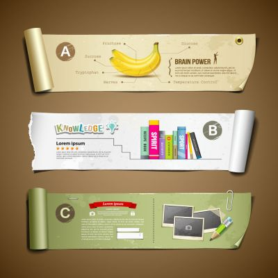 3D Paper Roll Simulation for Business Diagram and Infographics Design Vector Illustration (Free Download Illustrations)